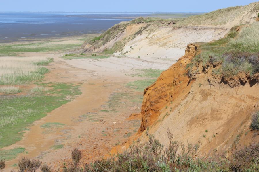 Typisch Sylt: Naturschutzgebiet Rotes Kliff bei Morsum
