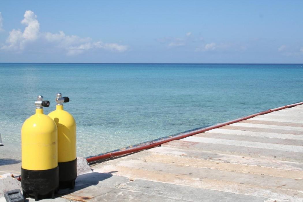 Insel erkunden - Tour in der Unterwasserwelt