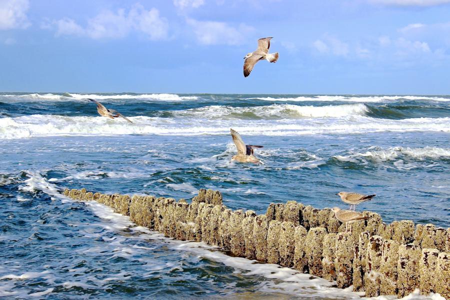 Typisch Sylt: Rauhe Nordseewellen und gesundes Reizklima