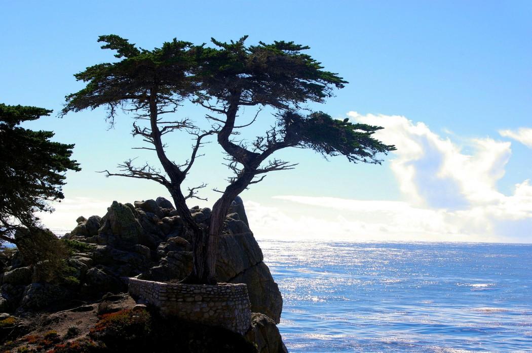 Typisch Zypern: Abwechlungsreiche Landschaft