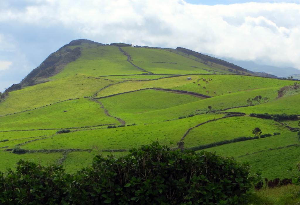 Typisch Azoren: San Jorge